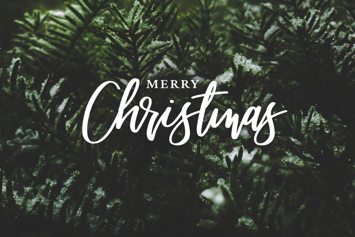Merry Christmas from European Springs